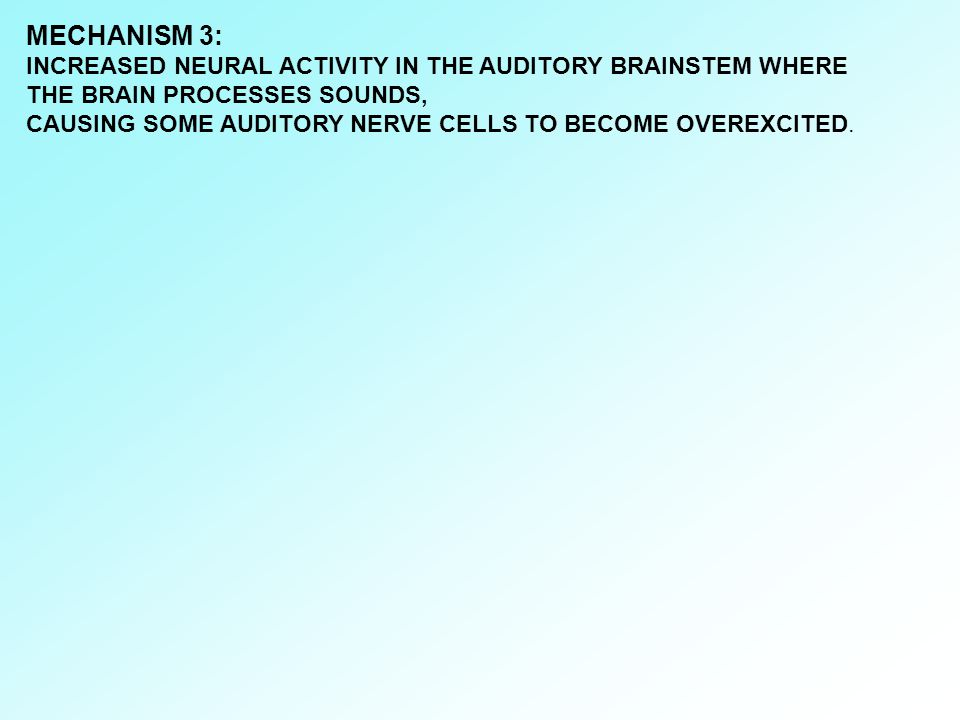 MECHANISM 3: INCREASED NEURAL ACTIVITY IN THE AUDITORY BRAINSTEM WHERE THE BRAIN PROCESSES SOUNDS,