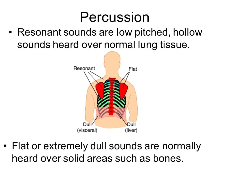 Percussion Resonant sounds are low pitched, hollow sounds heard over normal lung tissue.