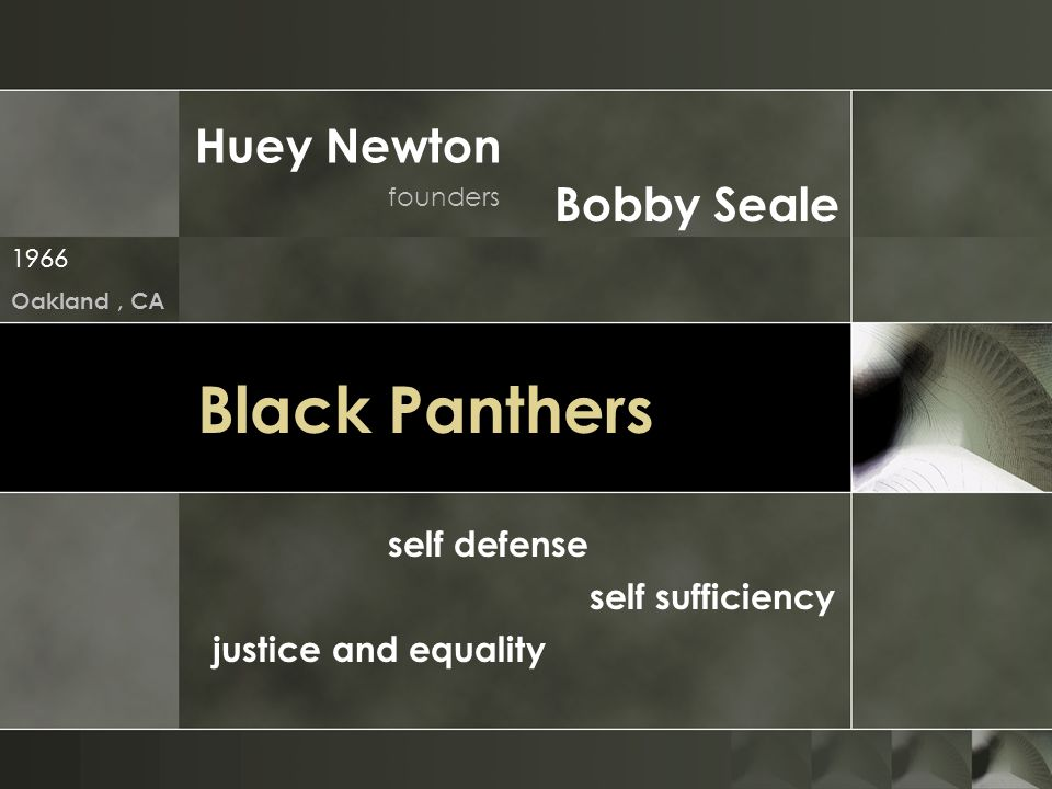 Black Panthers Huey Newton Bobby Seale self defense self sufficiency