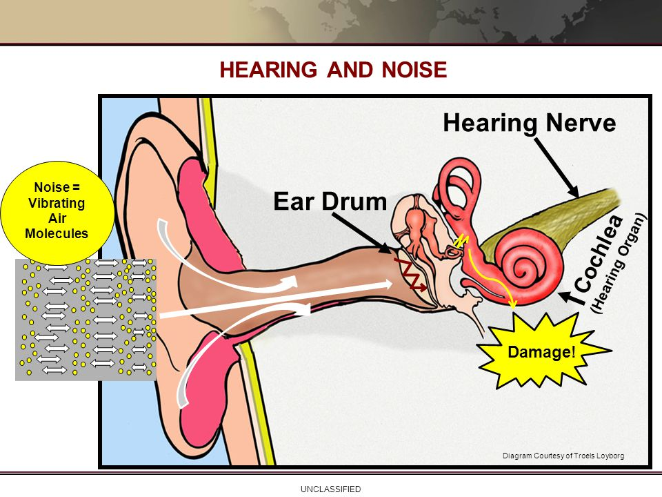 Noise = Vibrating Air Molecules