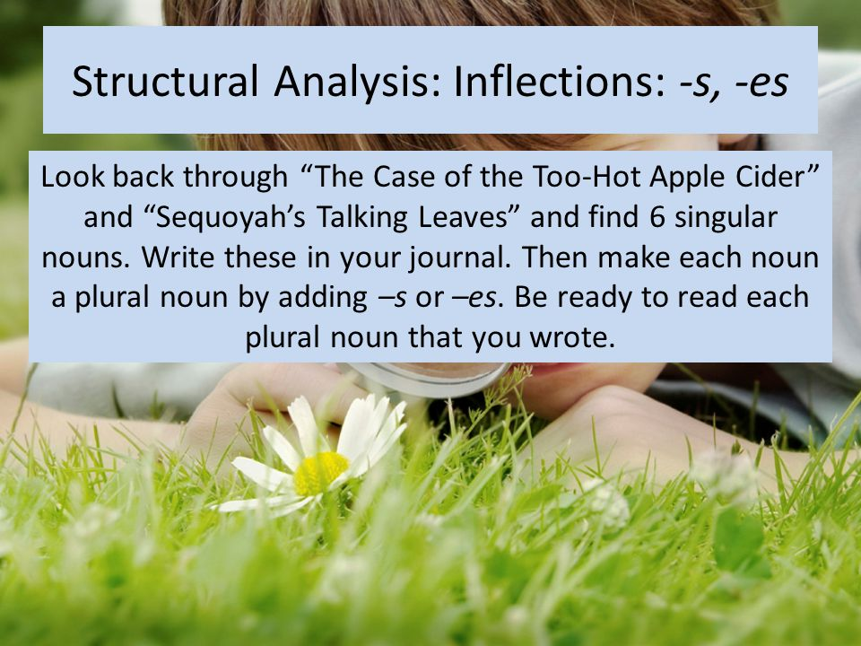 Structural Analysis: Inflections: -s, -es