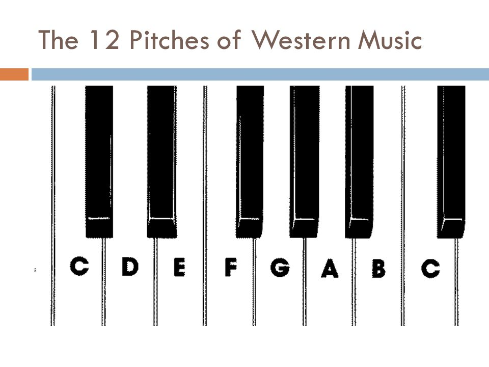The 12 Pitches of Western Music