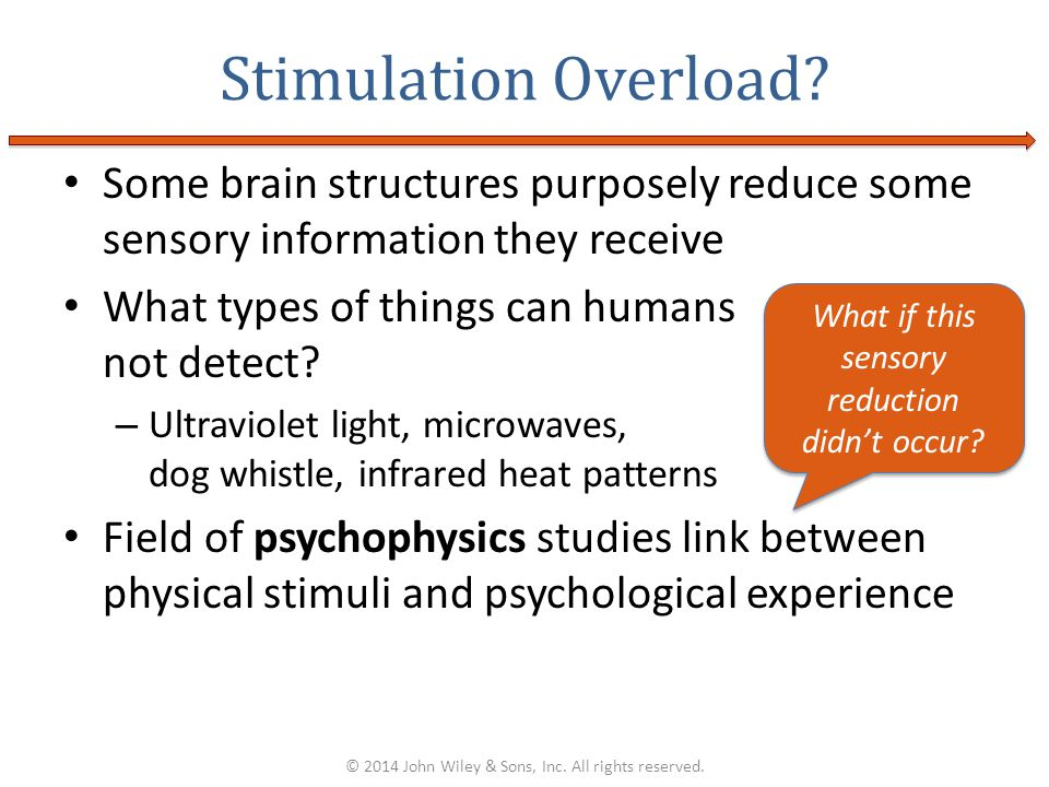 Stimulation Overload Some brain structures purposely reduce some sensory information they receive.