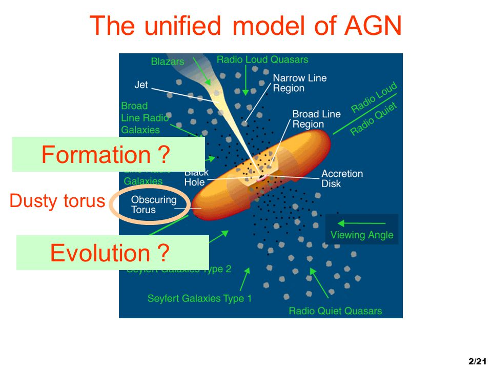 The unified model of AGN