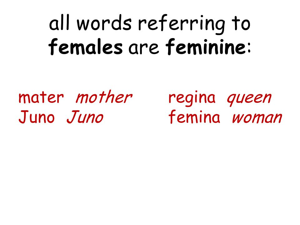 all words referring to females are feminine: