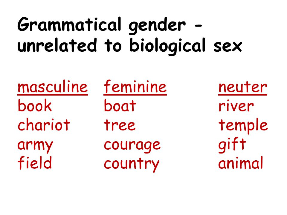 Grammatical gender - unrelated to biological sex masculine. feminine