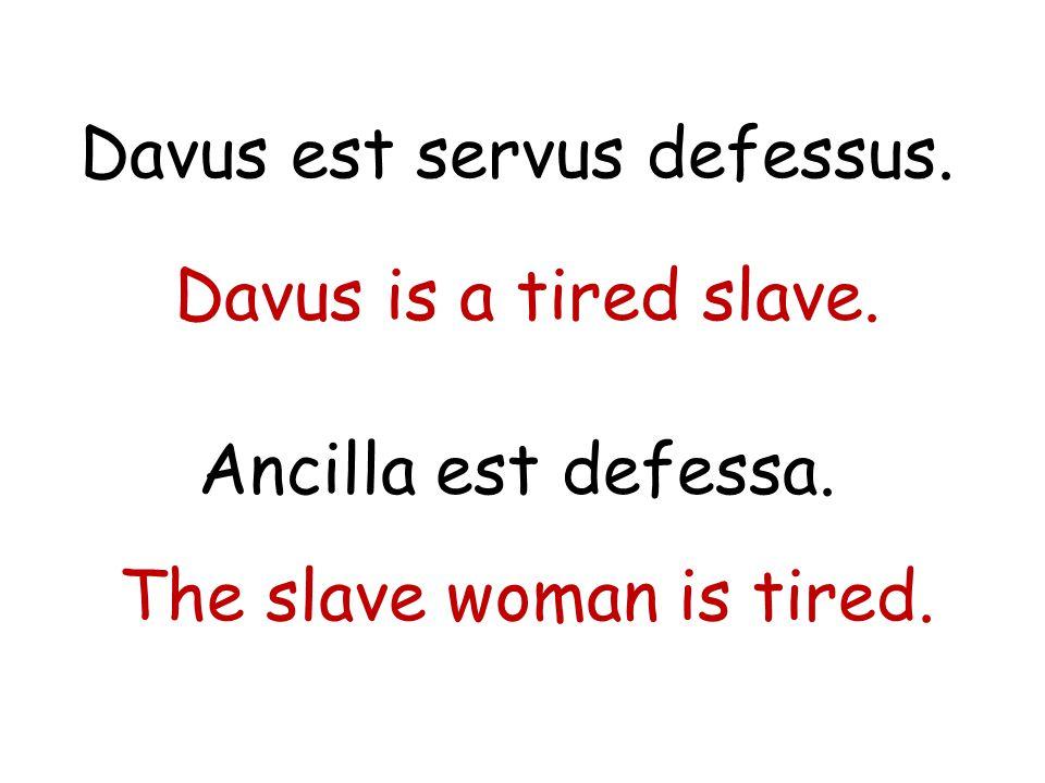 Davus est servus defessus.