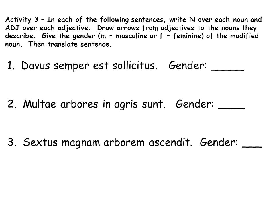 Activity 3 – In each of the following sentences, write N over each noun and ADJ over each adjective. Draw arrows from adjectives to the nouns they describe. Give the gender (m = masculine or f = feminine) of the modified noun. Then translate sentence.
