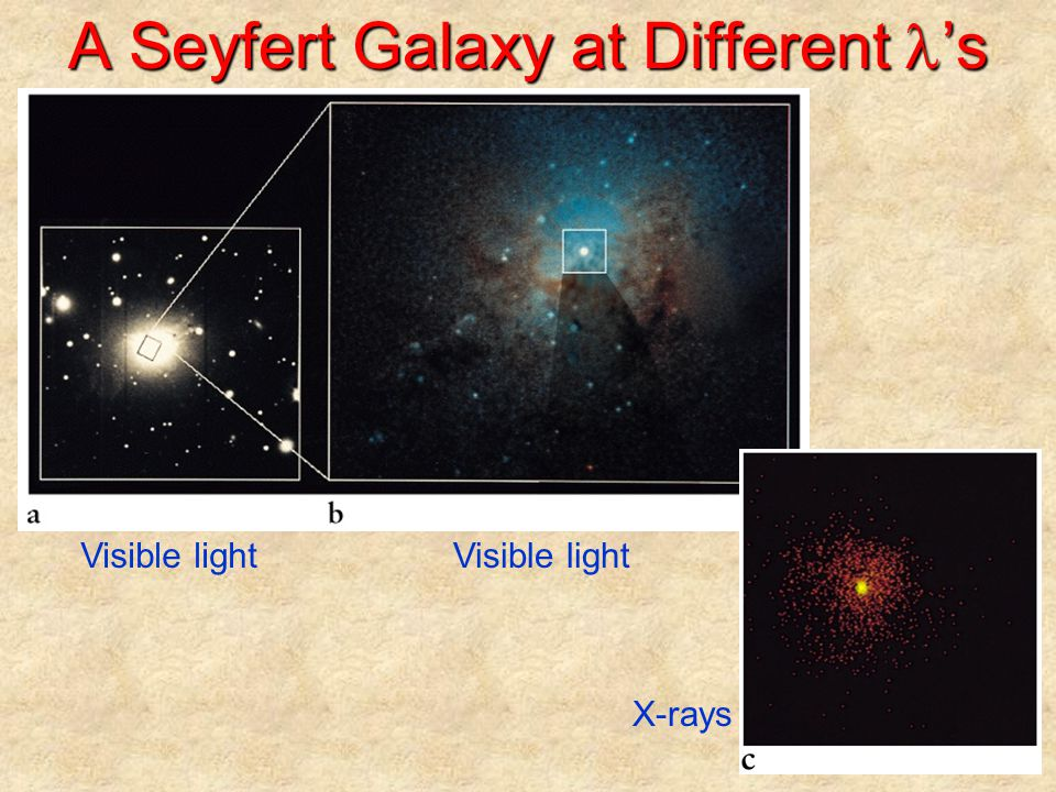 A Seyfert Galaxy at Different l's