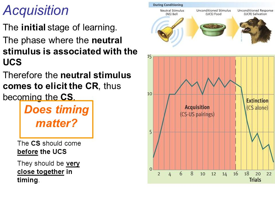 Acquisition Does timing matter The initial stage of learning.