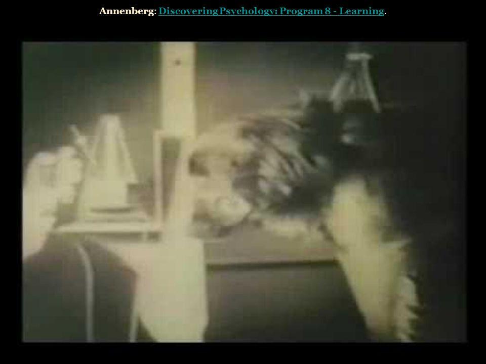 Annenberg: Discovering Psychology: Program 8 - Learning.