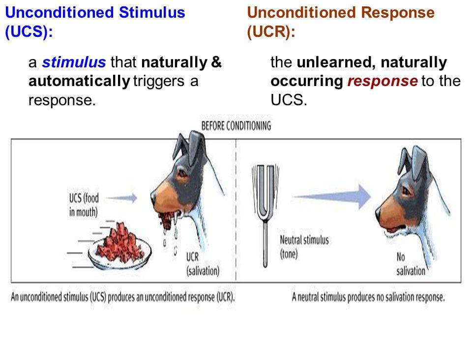 Unconditioned Stimulus (UCS):