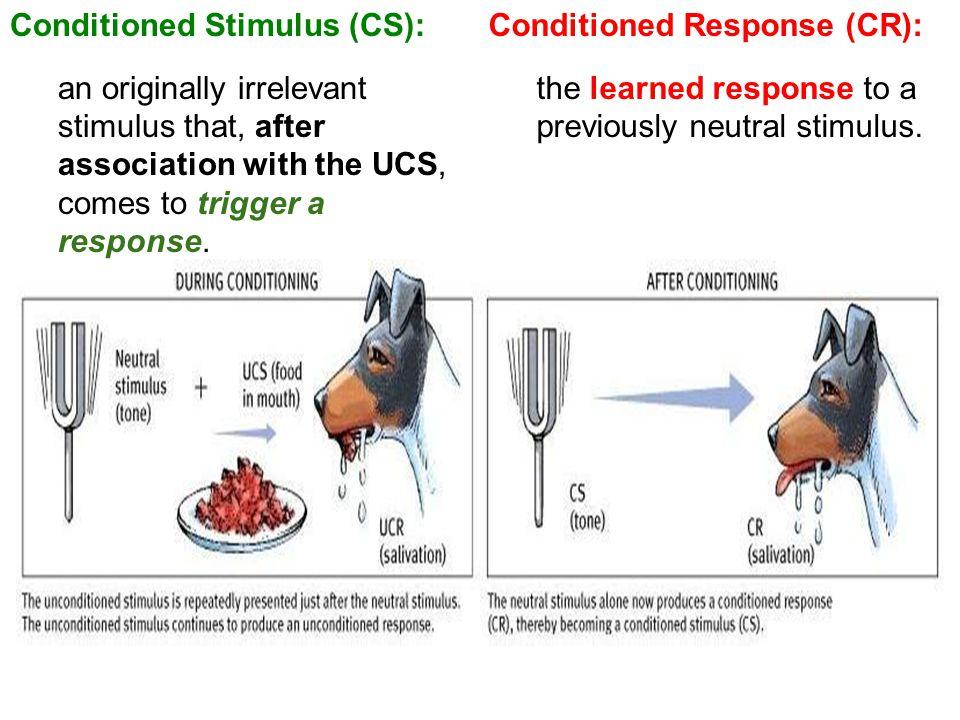 Conditioned Stimulus (CS):