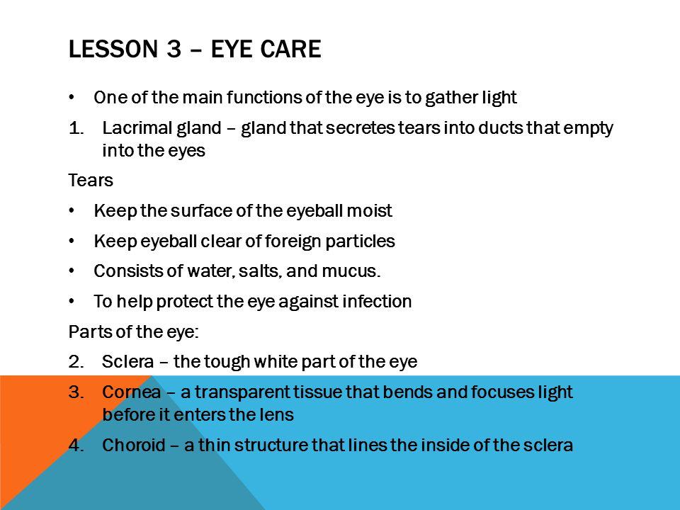 Lesson 3 – Eye Care One of the main functions of the eye is to gather light.