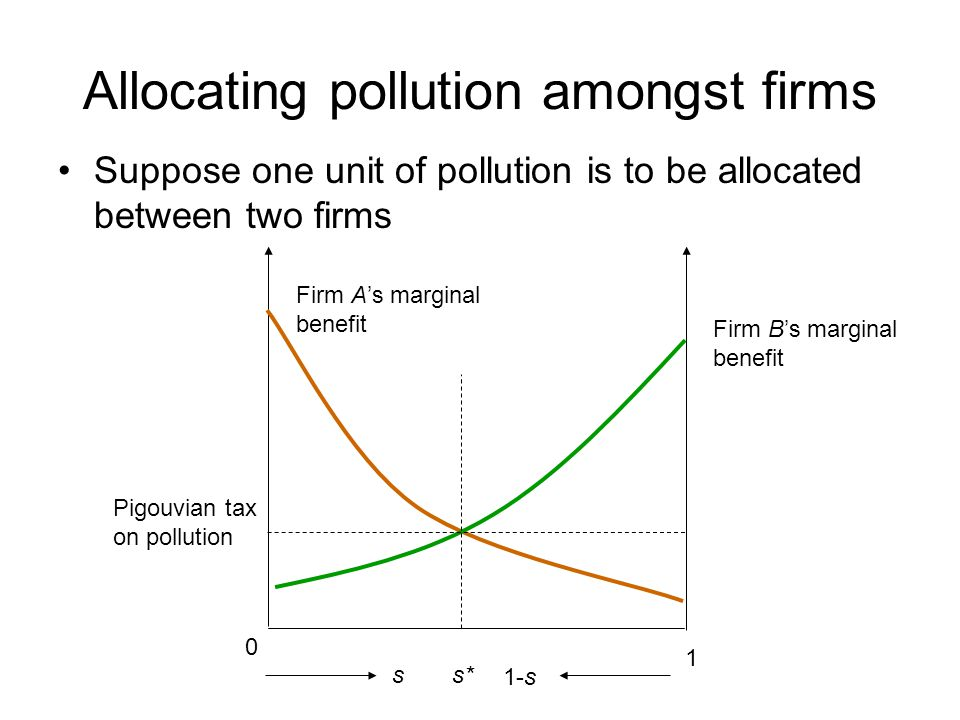 Allocating pollution amongst firms
