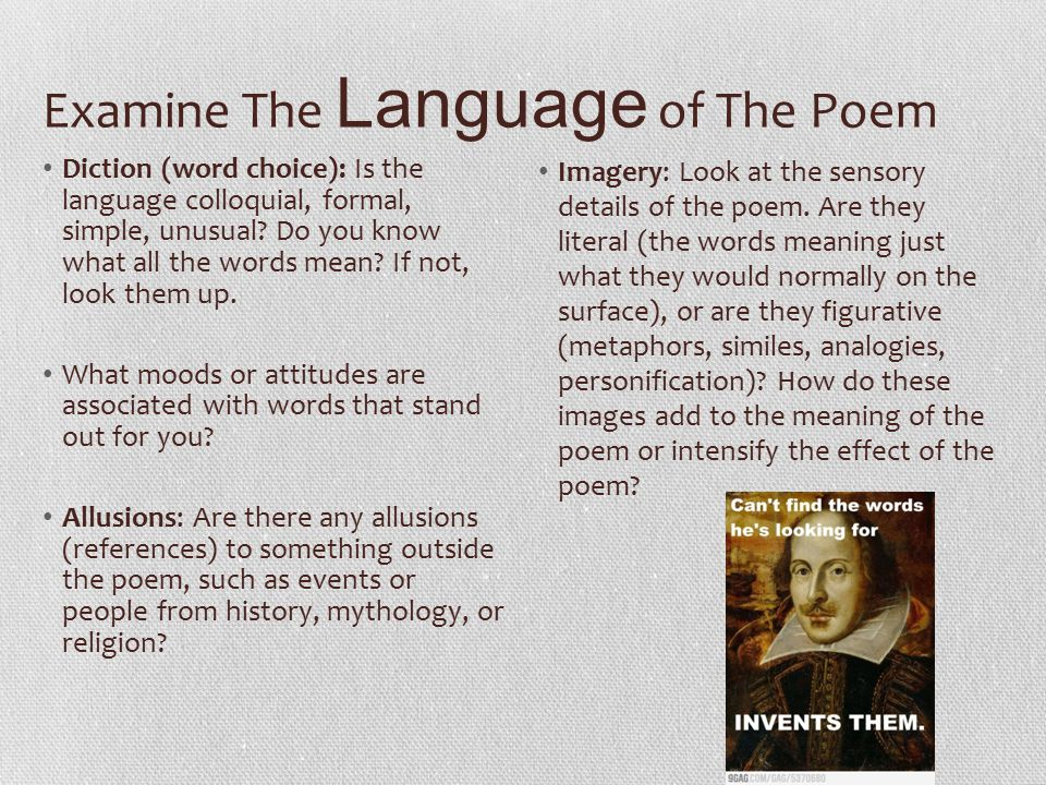 Examine The Language of The Poem
