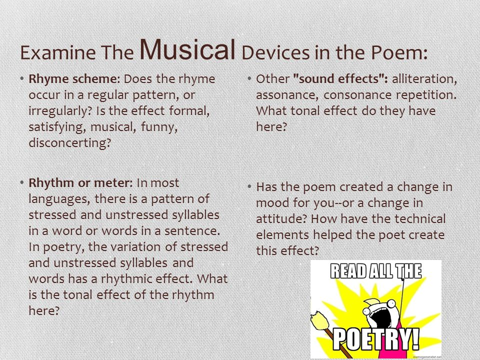 Examine The Musical Devices in the Poem: