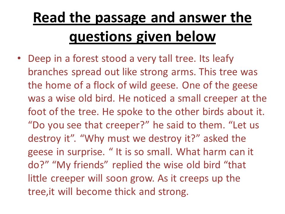 Read the passage and answer the questions given below