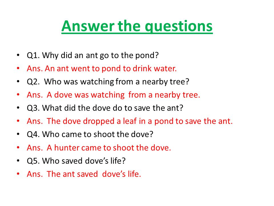 Answer the questions Q1. Why did an ant go to the pond
