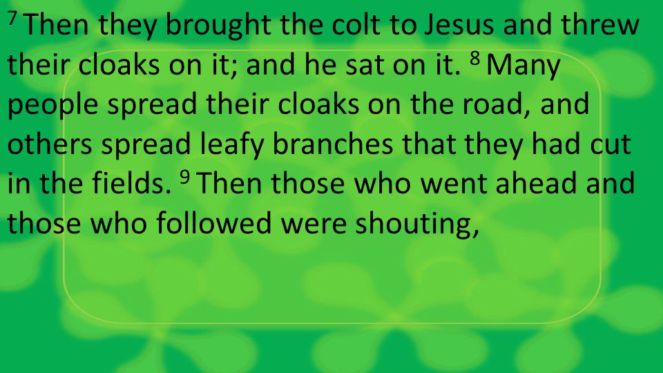 7 Then they brought the colt to Jesus and threw their cloaks on it; and he sat on it.