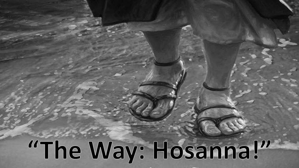 The Way: Hosanna!