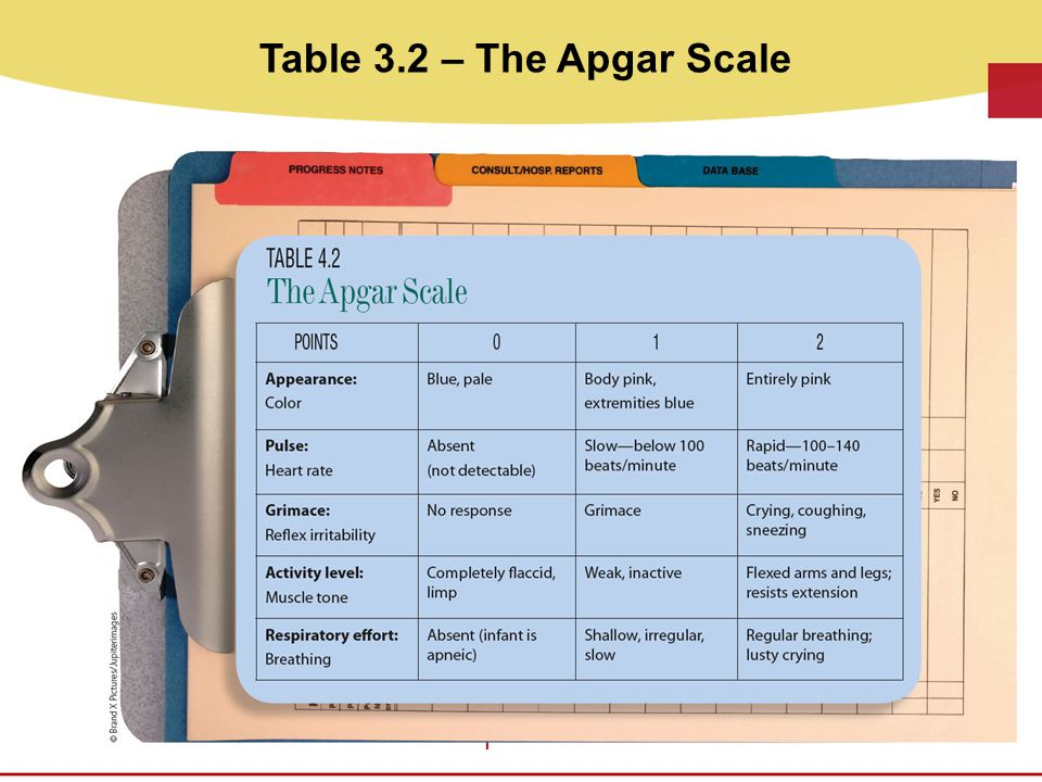 Table 3.2 – The Apgar Scale It is placed in the Clipboard as shown on page 57 of CDEV