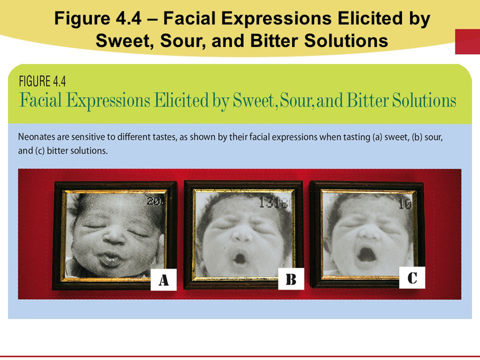 Figure 4.4 – Facial Expressions Elicited by Sweet, Sour, and Bitter Solutions