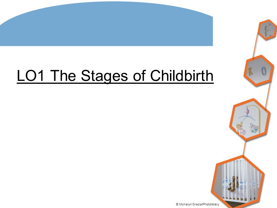 LO1 The Stages of Childbirth