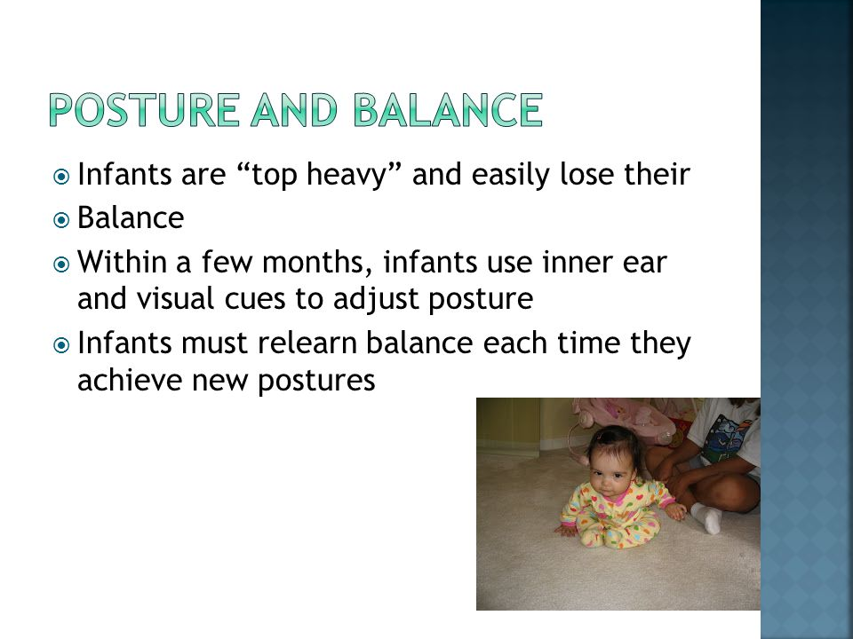 Posture and Balance Infants are top heavy and easily lose their