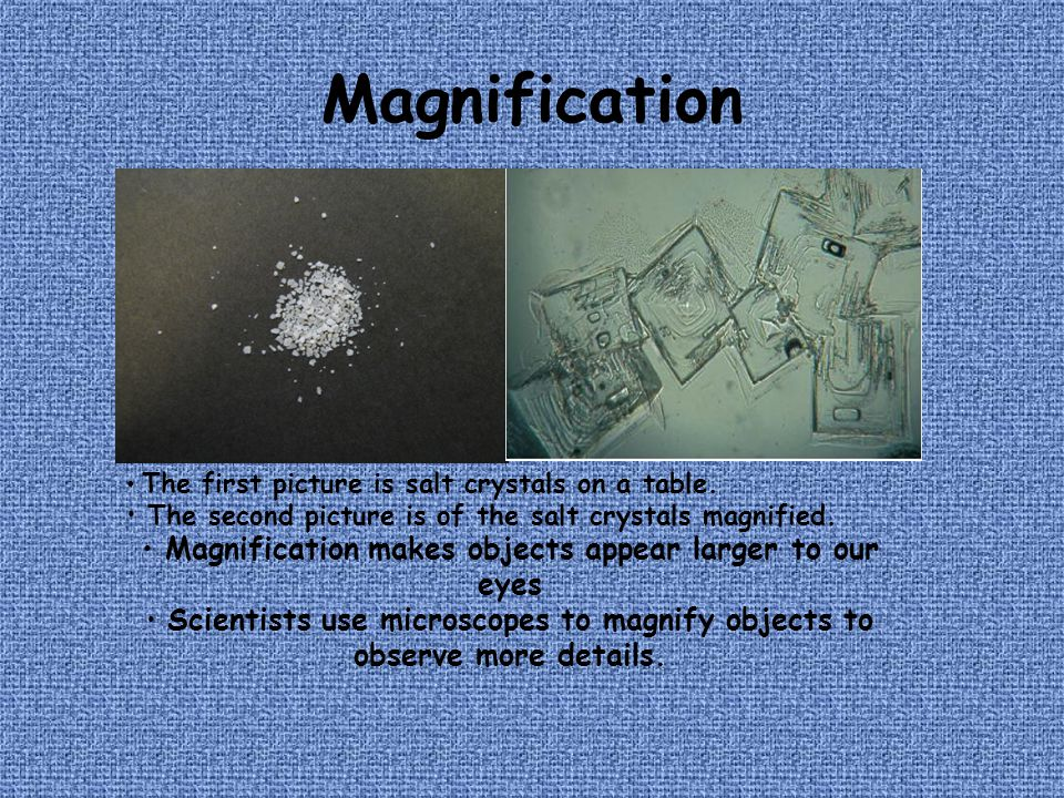 Magnification Magnification makes objects appear larger to our eyes