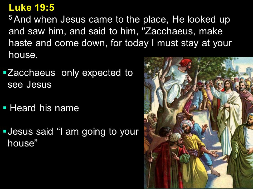 Zacchaeus only expected to see Jesus