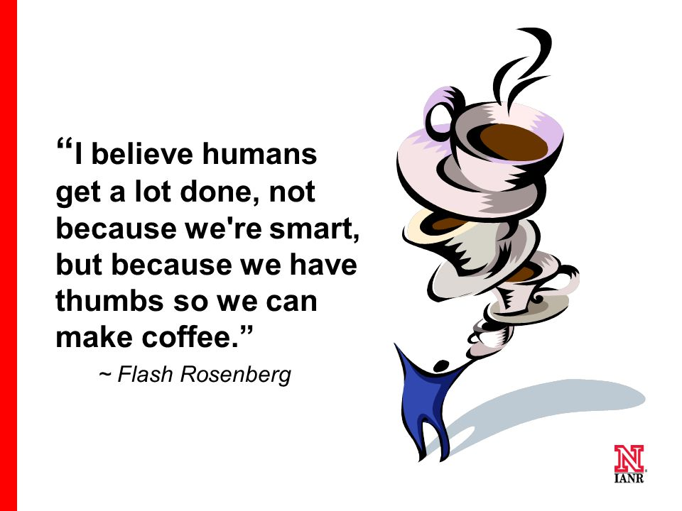 I believe humans get a lot done, not because we re smart, but because we have thumbs so we can make coffee.