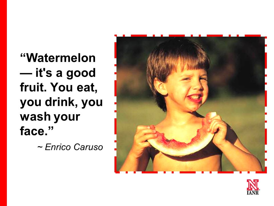 Watermelon — it s a good fruit. You eat, you drink, you wash your face. ~ Enrico Caruso