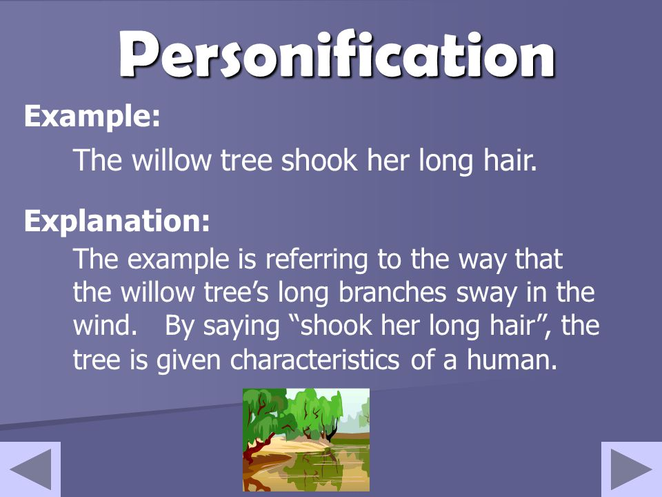 Personification Example: The willow tree shook her long hair.
