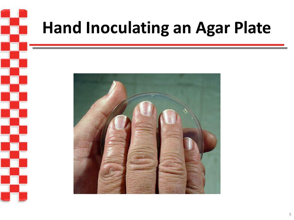 Hand Inoculating an Agar Plate