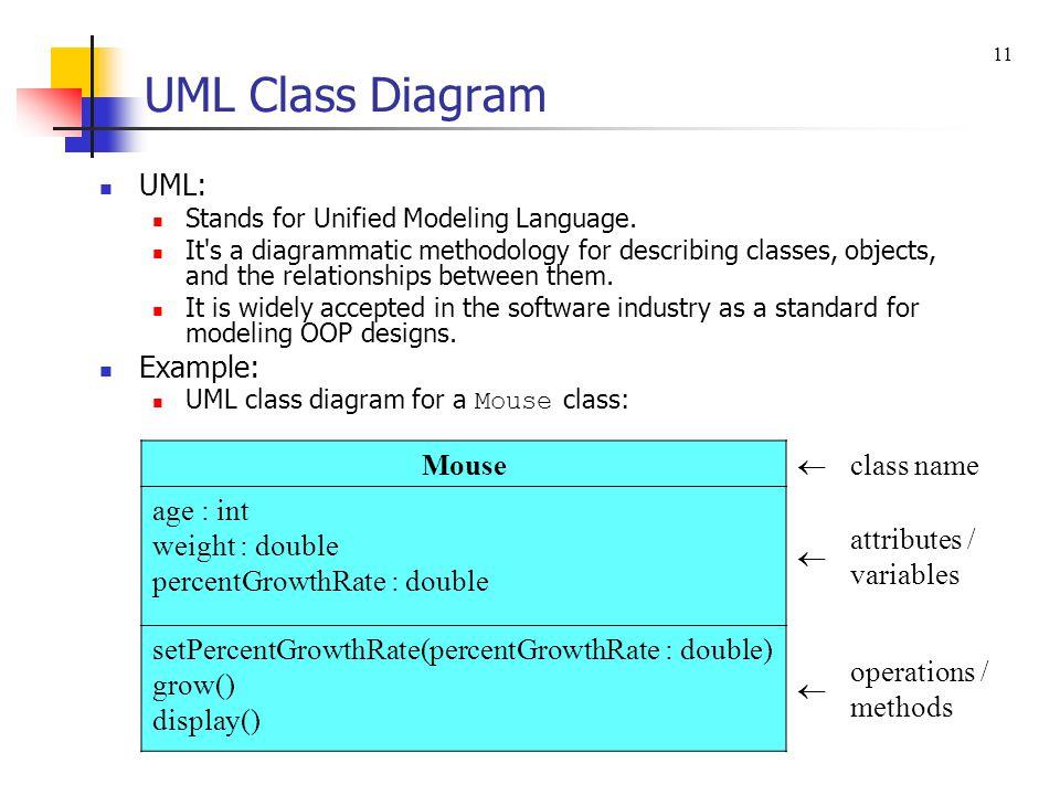 UML Class Diagram UML: Example: Mouse  class name age : int