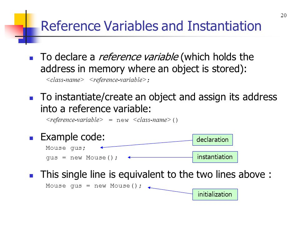 Reference Variables and Instantiation