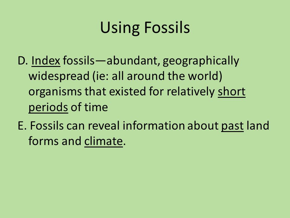 Using Fossils
