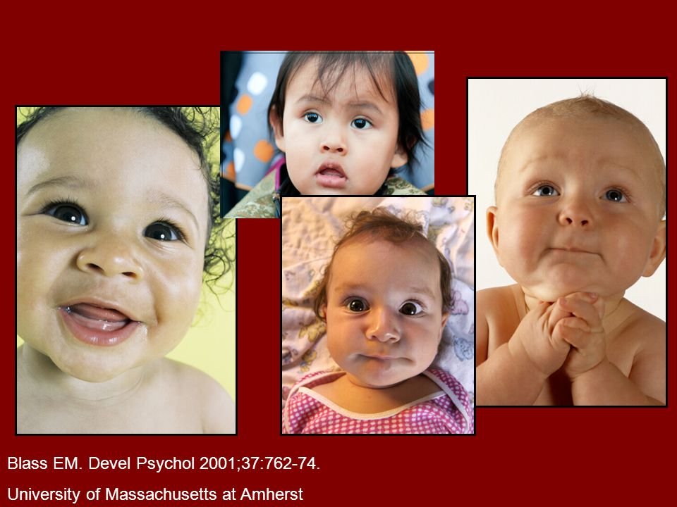Blass EM. Devel Psychol 2001;37:762-74.