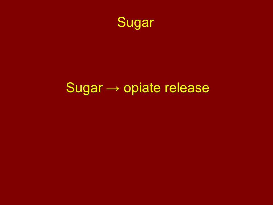Sugar Sugar → opiate release