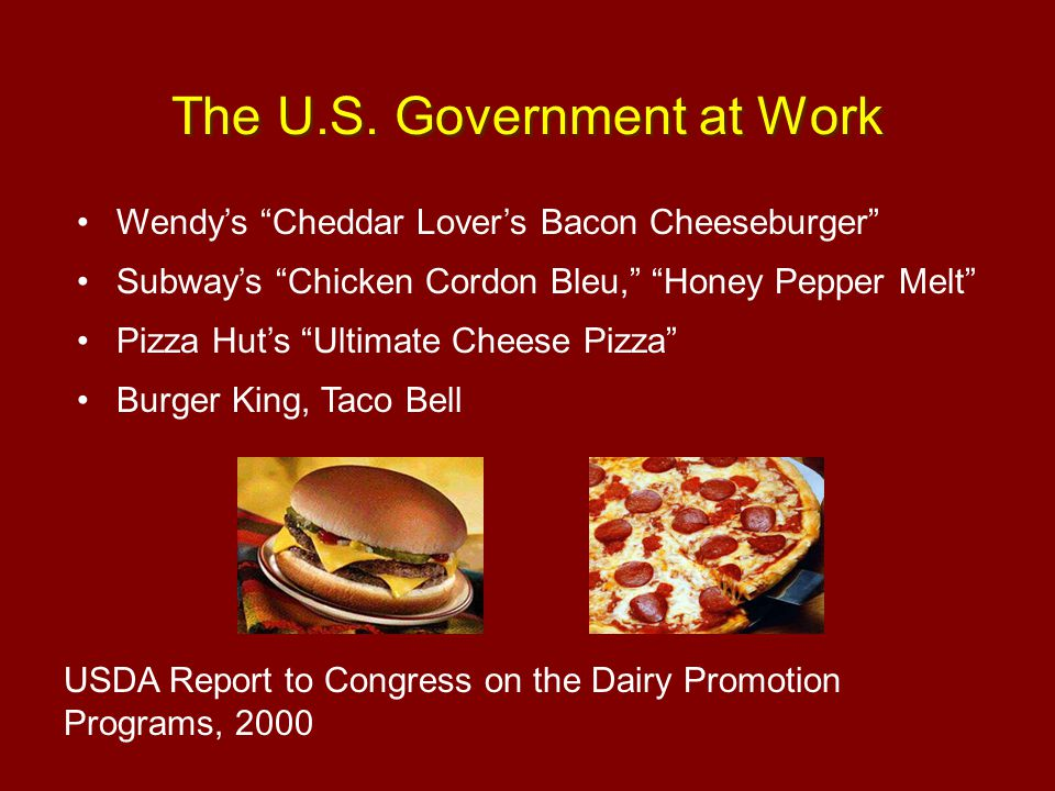 The U.S. Government at Work