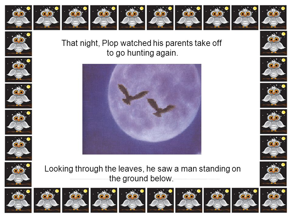 That night, Plop watched his parents take off to go hunting again.