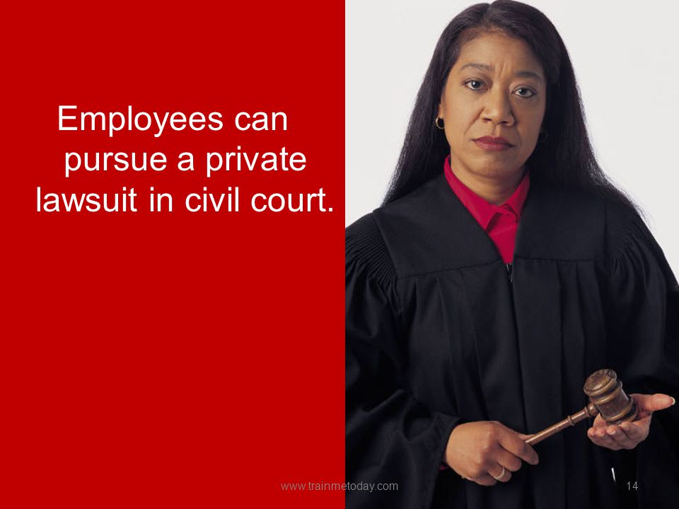 Employees can pursue a private lawsuit in civil court.