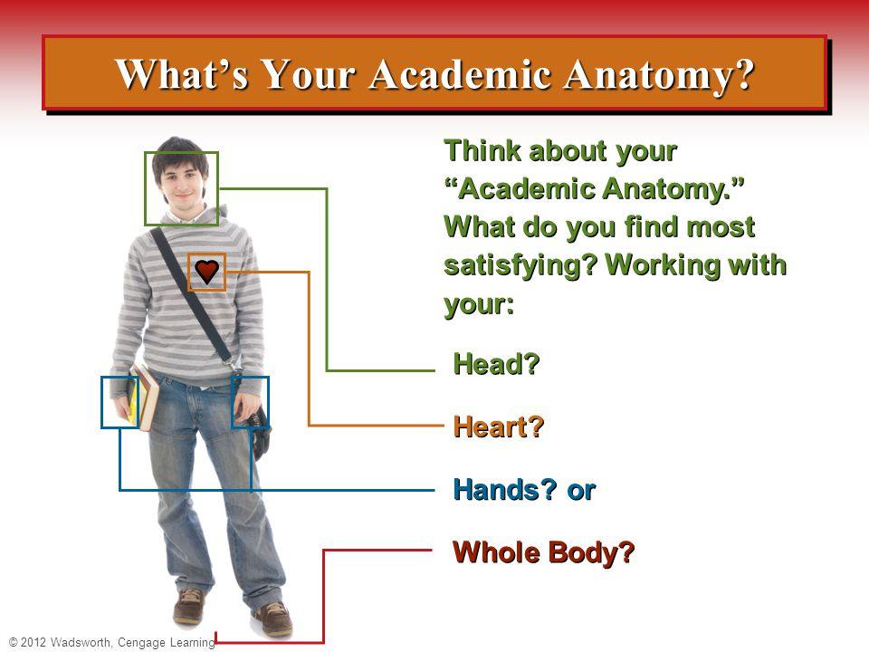 What's Your Academic Anatomy