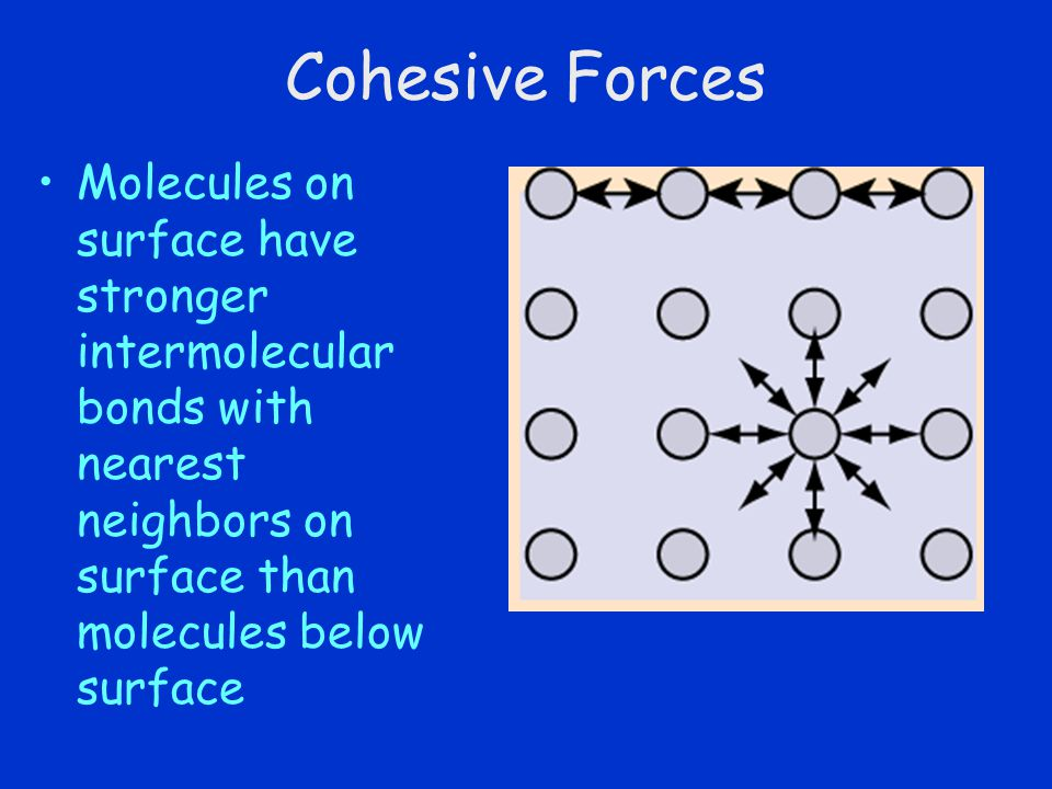 Cohesive Forces Molecules on surface have stronger intermolecular bonds with nearest neighbors on surface than molecules below surface.