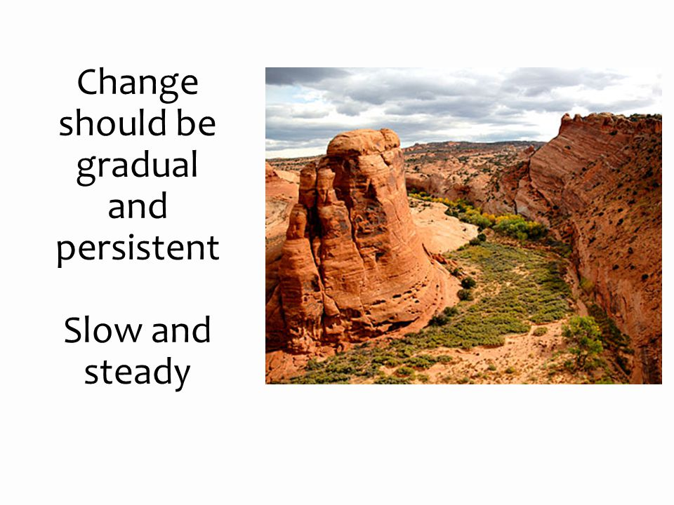 Change should be gradual and persistent