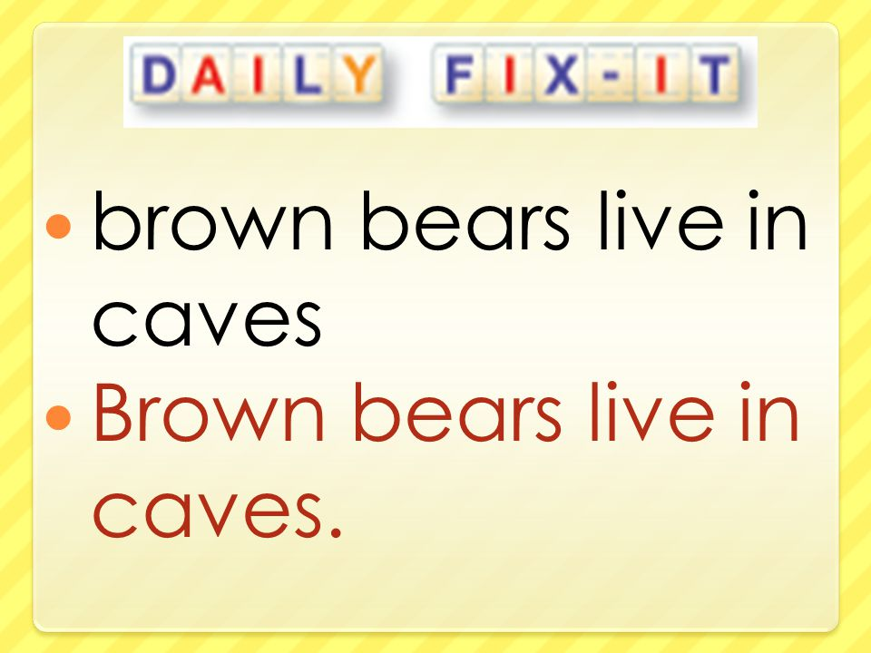 brown bears live in caves