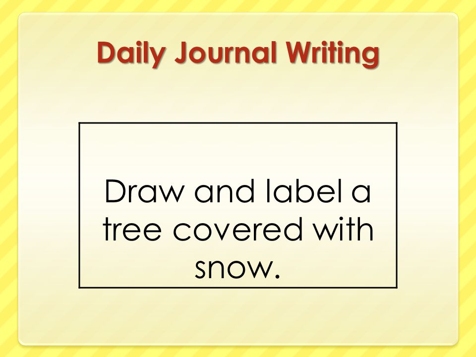 Draw and label a tree covered with snow.
