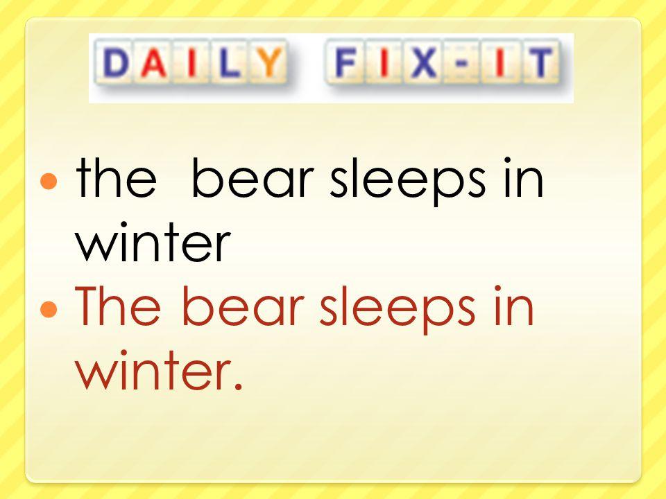 the bear sleeps in winter