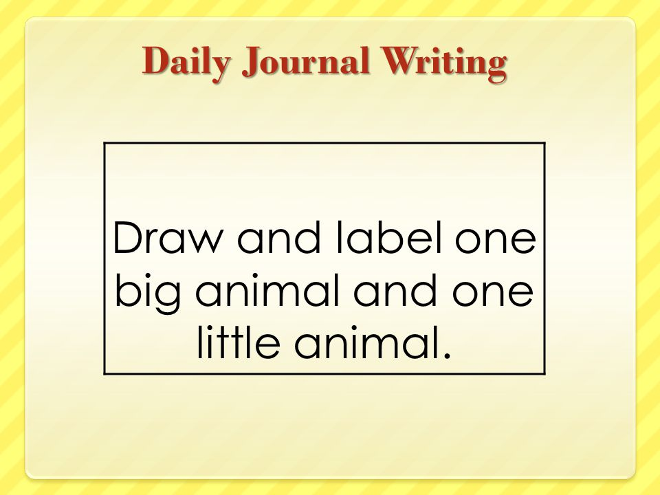Draw and label one big animal and one little animal.